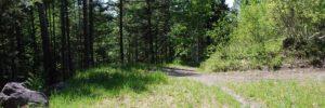 Flathead Lake Hiking and Trails
