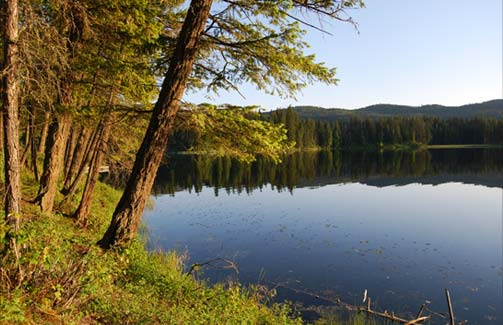 Loon Lake at Sunrise
