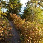 Flathead Lake Trail